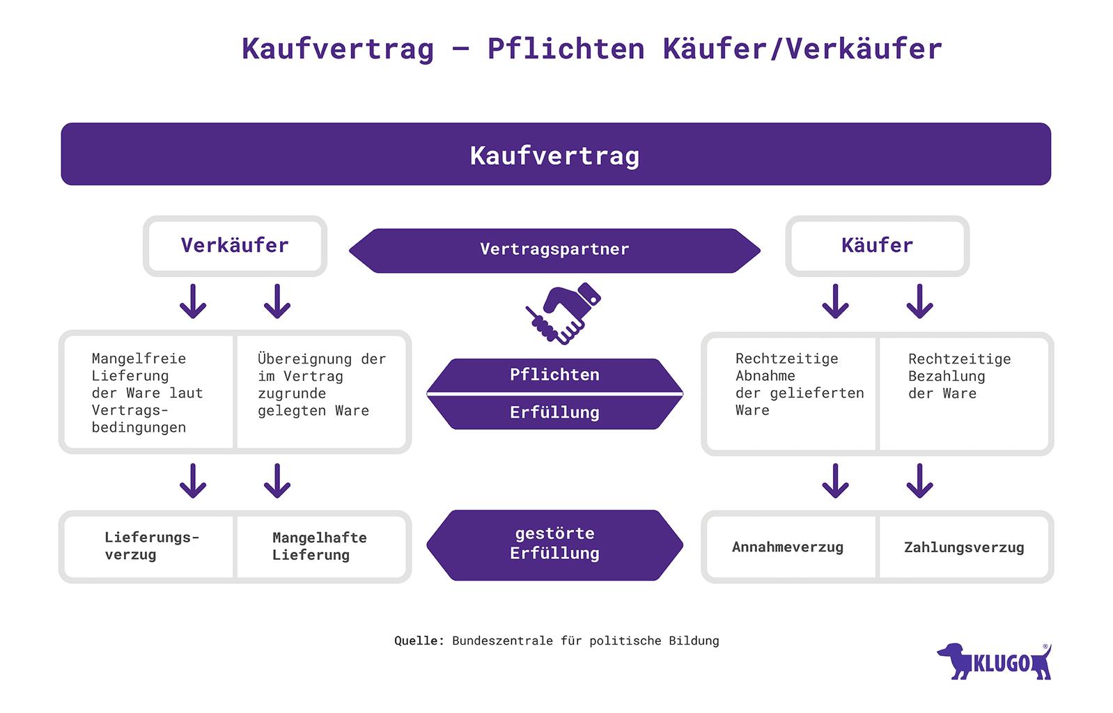 Pflichten Käufer/ Verkäufer  – Infografik